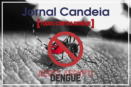 Bariri registra 126 casos de dengue