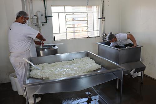 Empresa baririense produz queijo com leite de búfala